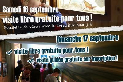 Découvrir La Loire Par L'éveil Des Sens à Saint Dye sur Loire