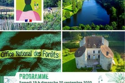 Découvrir Le Patrimoine Forestier De Montmorency à Montlignon