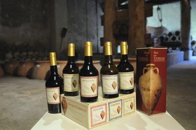 Dégustation De Romanum Vinum à Beaucaire