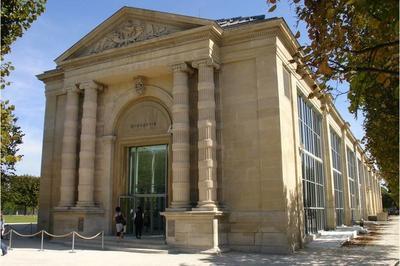 Des Jumeaux Dans Le Jardin Des Tuileries - Histoire Et Actualités à Paris 1er
