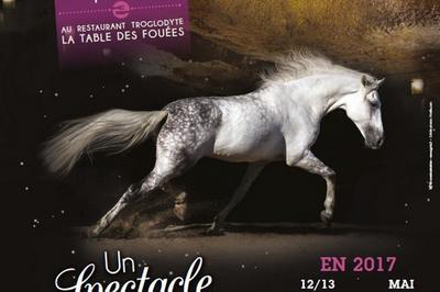 Dîner spectacle equestre à Saumur