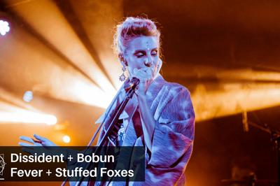 Dissident, Bobun Fever et Stuffed Foxes à Bourges