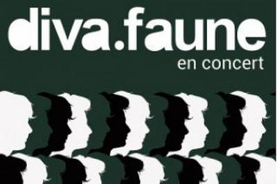Diva Faune à Bordeaux