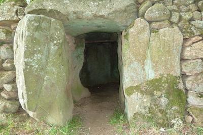 Dolmen Du Petit Vieux Sou - Brecé (53120) à Brece