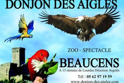 Donjon Des Aigles à Beaucens