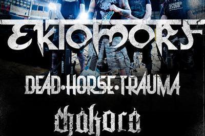 Ektomorf + Dead Horse Trauma à Colmar