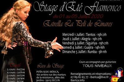 5ème édition des stages d'été Suena Flamenco à Seclin