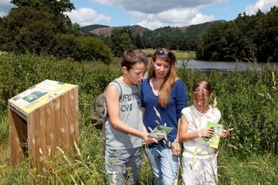 En Famille, Jusqu'au Cratère D'un Volcan, Laissez-vous Guider Par Des Activités Nature Sorties De La Musette à Clermont Ferrand
