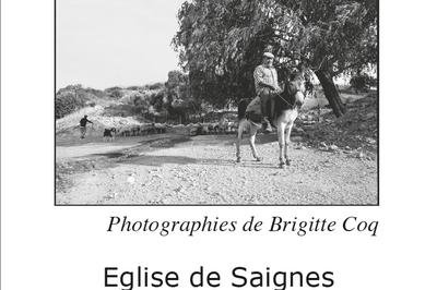 En terres sardes à Saignes