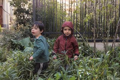 Enfants sauvages à Amiens