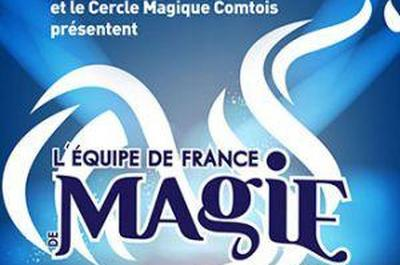 Equipe De France De Magie Ffap En Gala à Besancon