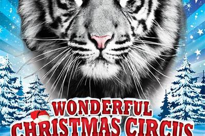 1er grand cirque de noël de Caen | wonderful christmas circus