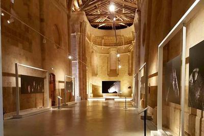 Exposition Au Grand Galop. Duruthy Et L'art Des Origines De Claire Artemyz à Hastingues