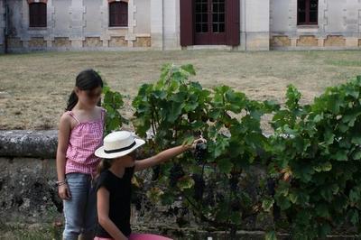 Exposition Au Musée Du Vin Et De La Vigne à Saint Pierre de Chignac