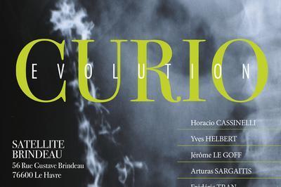 Exposition CURIO : Évolution à Le Havre