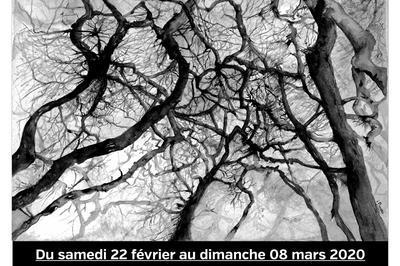Exposition dessins à l'encre - Histoires de vignes et d'arbres à Vertou