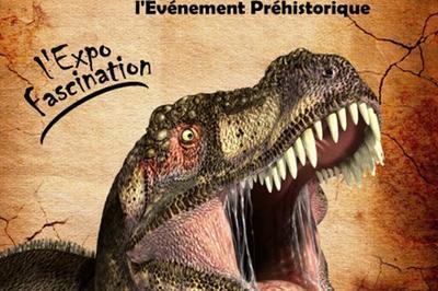 Exposition Dinosaures à Mont de Marsan