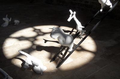 Exposition La Vie En Blanc à Ginals
