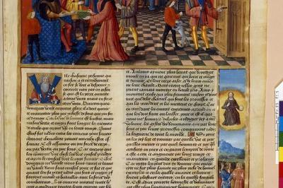 Exposition «être Mécène À L'aube De La Renaissance - L'amiral Louis Malet De Graville» à Le Havre