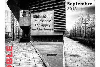Exposition «grenoble, Fragments De Ville». à Le Sappey en Chartreuse