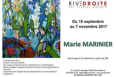 Exposition Marie Marinier à Saint Etienne