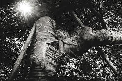 Exposition des photographies d'art de Bernard Coste à Dieulefit