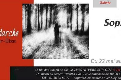 Exposition Sophie Patry à Auvers sur Oise