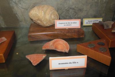 Exposition Sur L'évolution De L'homme Préhistorique à Severac le Chateau