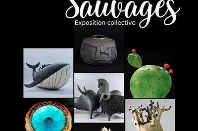 Exposition « Terres Sauvages » à Salernes