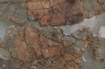 Exposition - Vitrine D'actualité Archéologique : L'art D'habiller Les Murs à Evreux