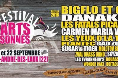 Festival Des Arts Sonnes-Pass 2 J. à Saint Andre des Eaux