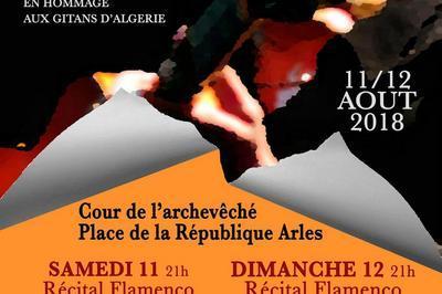 Festival Flamenco d'Arles