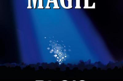 Festival International De Magie à Blois
