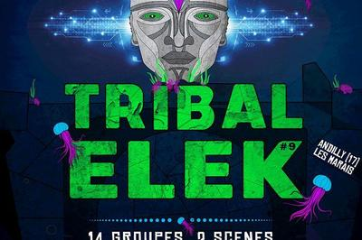 Festival Tribal Elek 2018