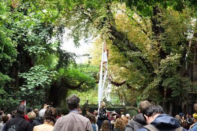 Fêtez les Journées Européennes du Patrimoine au Musée des Arts Forains ! à Paris 12ème
