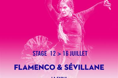 Flamenco & Sévillane à Arles