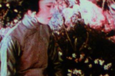 Fleur De Lotus De Chester M. Franklin - 1922 à Paris 13ème