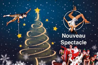 Folie De Noel Sur Glace à Bourg en Bresse