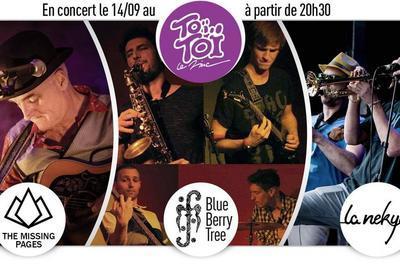 From Jazz to British Rock à Villeurbanne