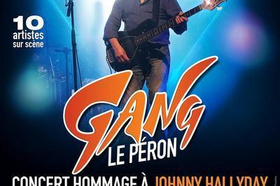 Gang Le Péron - Concert hommage à Johnny Hallyday à Forges les Eaux