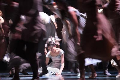 Giselle à Paris 1er