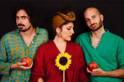 Golnar & Mahan The Contemporary Sound Of Iran? à Paris 1er