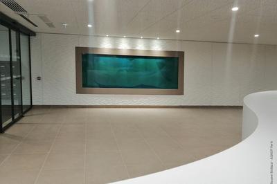 La nouvelle création in situ de Guillaume Bottazzi à Lyon