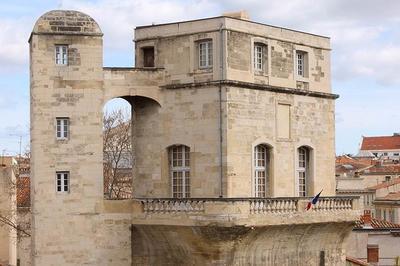 Histoire Du Faubourg De La Babote Du Xiie Siècle À Nos Jours à Montpellier