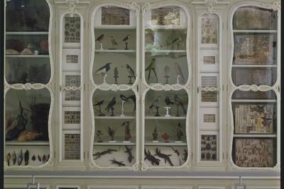 Histoires Naturelles : Le Cabinet De Curiosités Bonnier De La Mosson à Paris 5ème