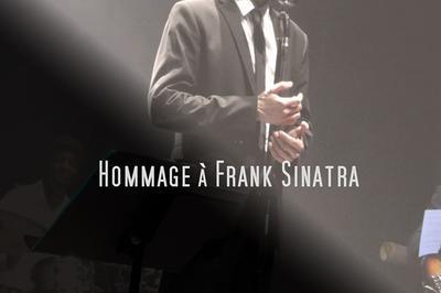 Hommage A Sinatra à Avignon