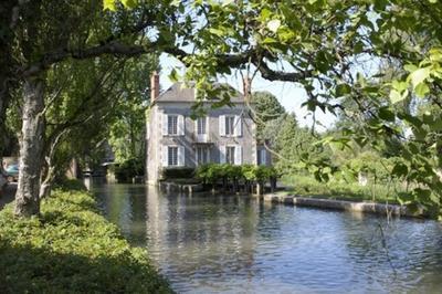 Découverte : Huilerie Du Moulin De L'ile à Donzy