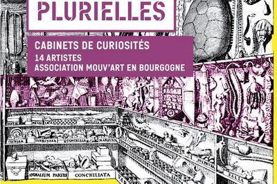 Identités plurielles, cabinets de curiosités à Auxerre