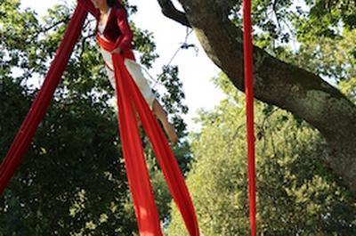 Printemps des abbayes : Spectacle de cirque aérien le Géant aux fruits d'or et de glace à Le Tronchet