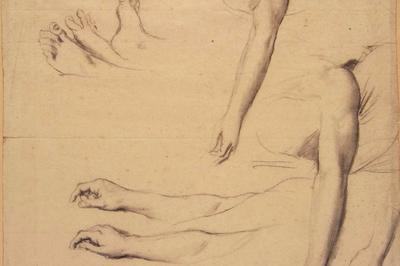 Ingres Et Bourdelle, De L'idée À L'oeuvre à Montauban